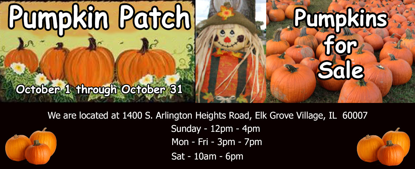 2017 Pumpkin Patch banner-revised