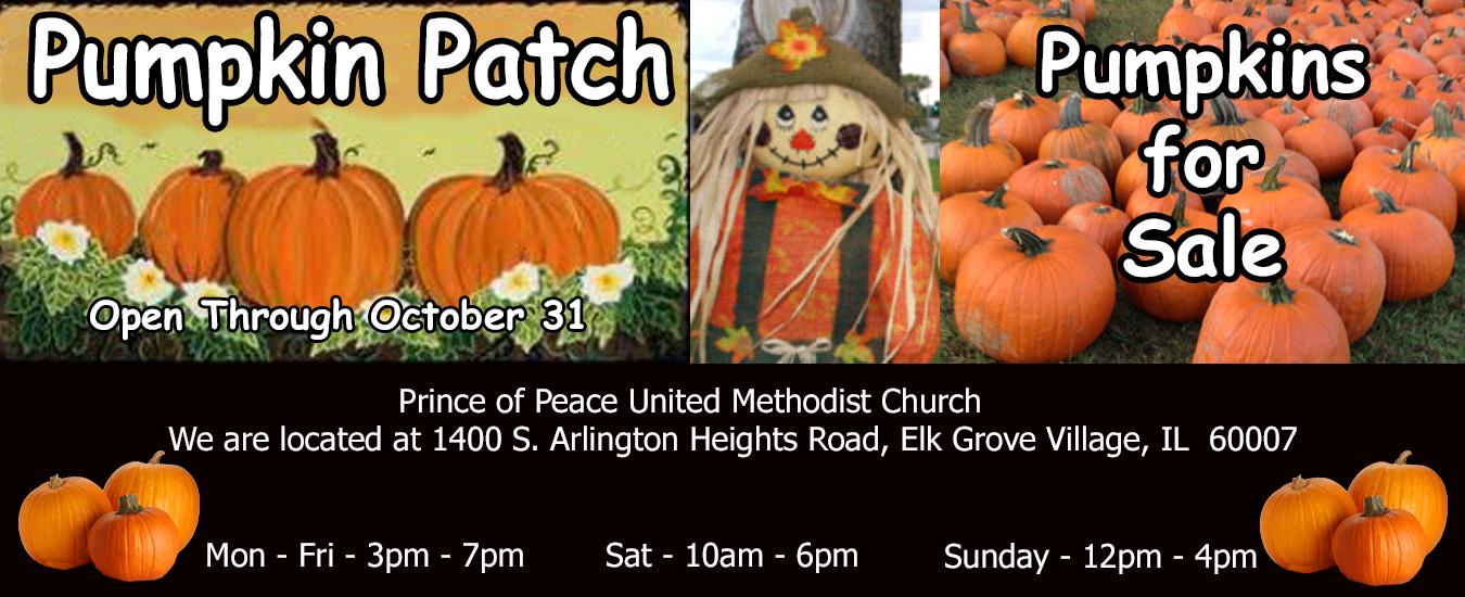 2019 Pumpkin Patch banner