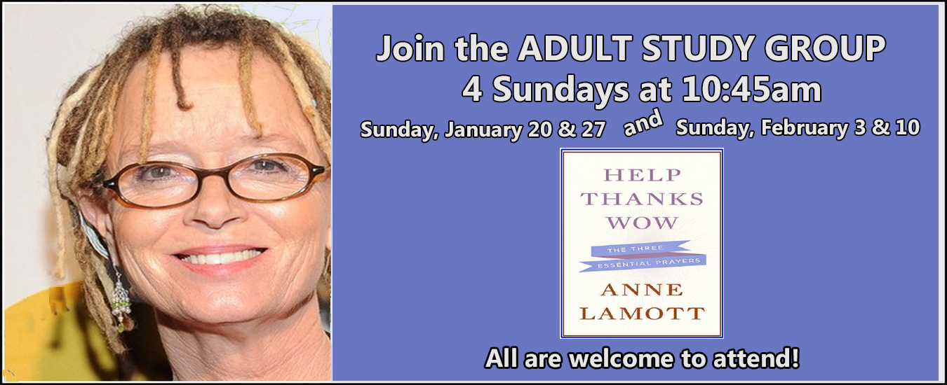 Adult Study Group Banner Web