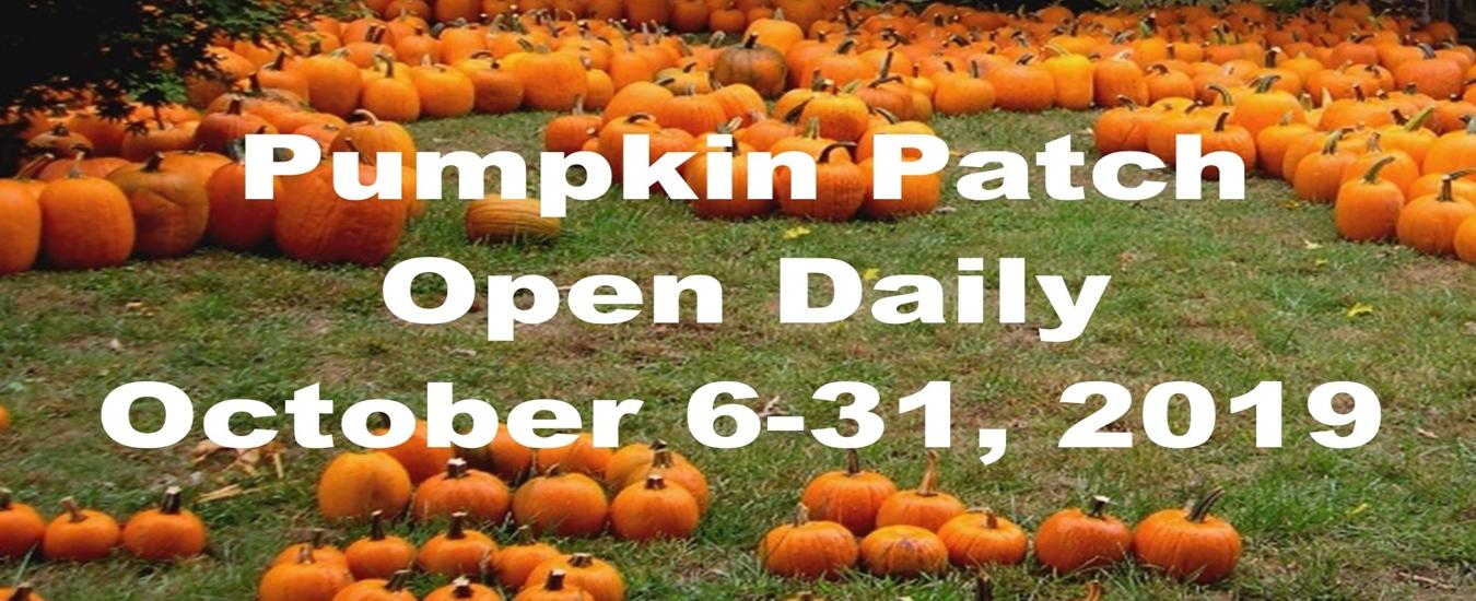 Pumpkin Patch Open Daily 1350×550 (1)